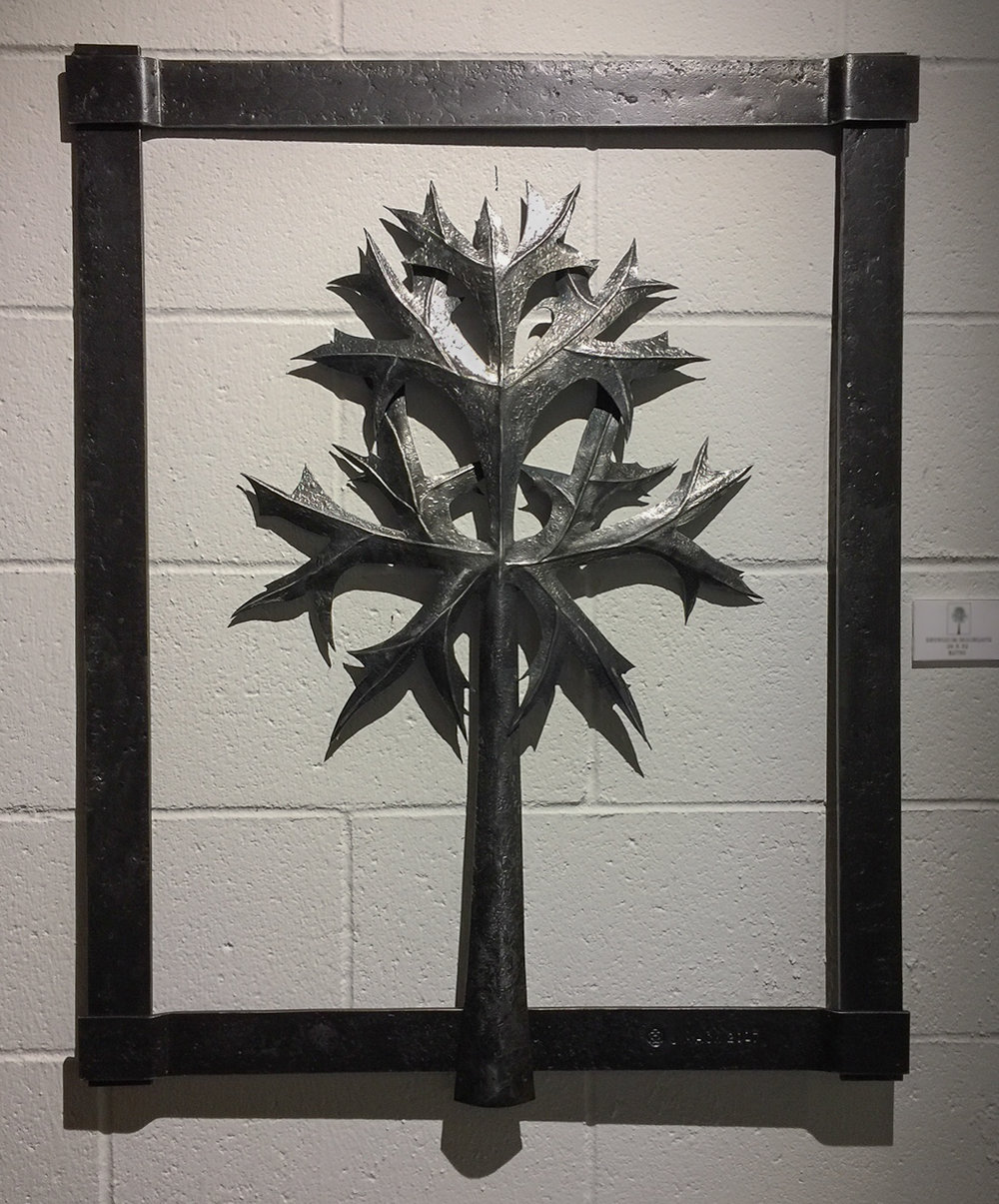 ERYNGIUM BOURGATII 2017 26 x 32 Forged Mild Steel