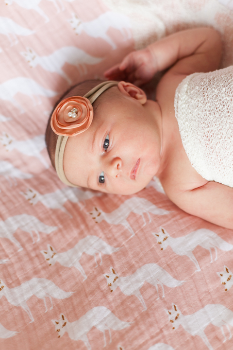 6.24.2018 - Newborn Lorine Riddle - blog-11.jpg