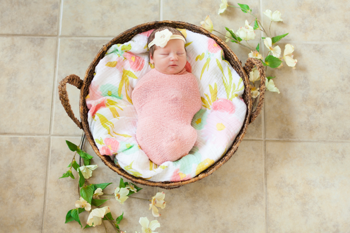 broken arrow newborn photographer