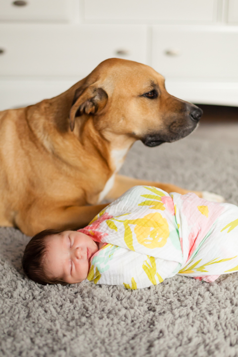 newborn and dog together