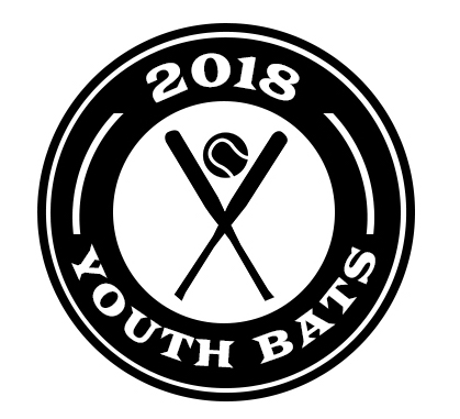 2018 Youth Bats | Best Youth Baseball Bat Reviews