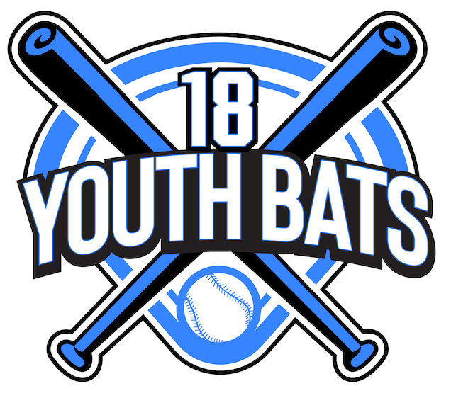 The Best Youth USA Bat Reviews (August 2018) — The Best