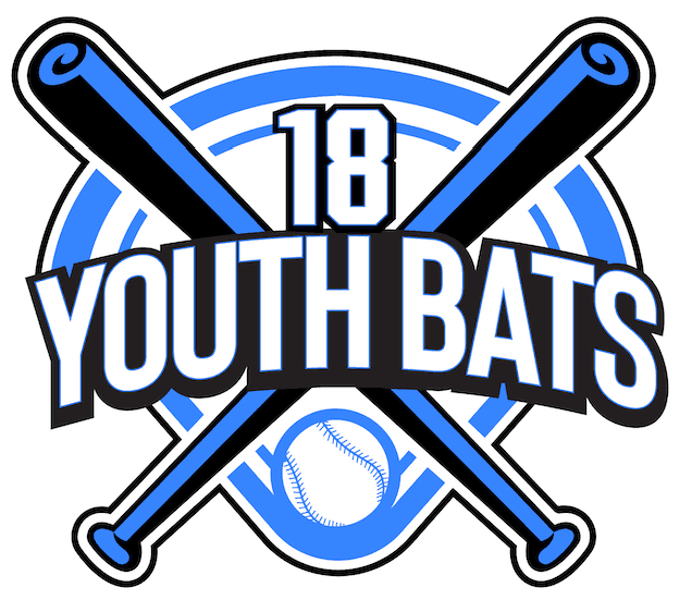 The Best Youth Baseball Bat Reviews | USA Youth Baseball