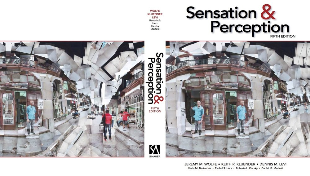 Sensation_Cover & Back.JPG