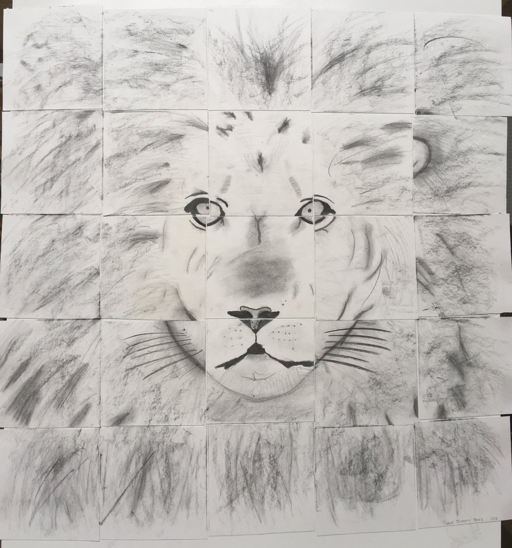 "Lion by Gabriel Irizarry, 25x25"", Pencil and Charcoal, 2018"