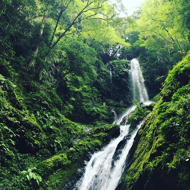 """夏休み最後は徳島県神山町に行ってきました。高知市から車で約2時間半。  約800Mのトレッキングで到着する日本の滝百選に選ばれた """"雨乞いの滝"""" へ。  美しく壮大な景色にしばし見とれつつ、身体の中の酸素を入れ替えるように深呼吸。  思い立ったら大自然へドライブ。四国・高知の楽しみは奥深い。  #renovation #kochilife #kochi #kagamiriver #shareandgrow #sharegrow #高知市 #高知 #高知暮らし #リノベーション #シェアアンドグロー #高知ハウス #アンド #kochihouse #and #collaboration #collaborationproject #徳島県 #神山町 #雨乞いの滝 #shikoku #tokushima #kamiyama #amagoinotaki"""