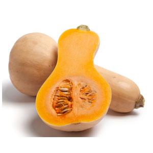fca3dbf1d3ae63370524a14436f04d14.pumpkin-butternut