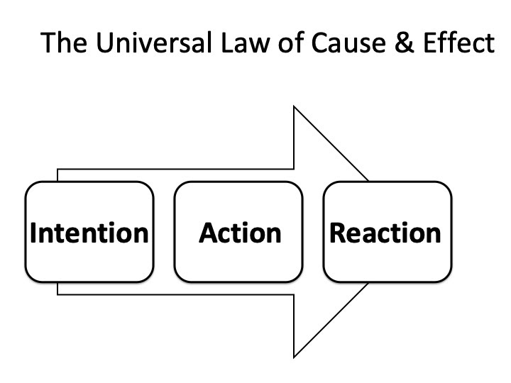 the universal law of cause and effect.jpg