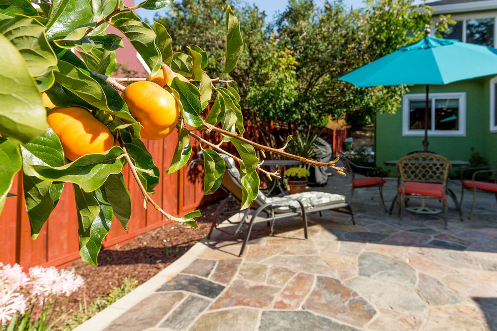 Fruit Trees Aptos Homes For Sale