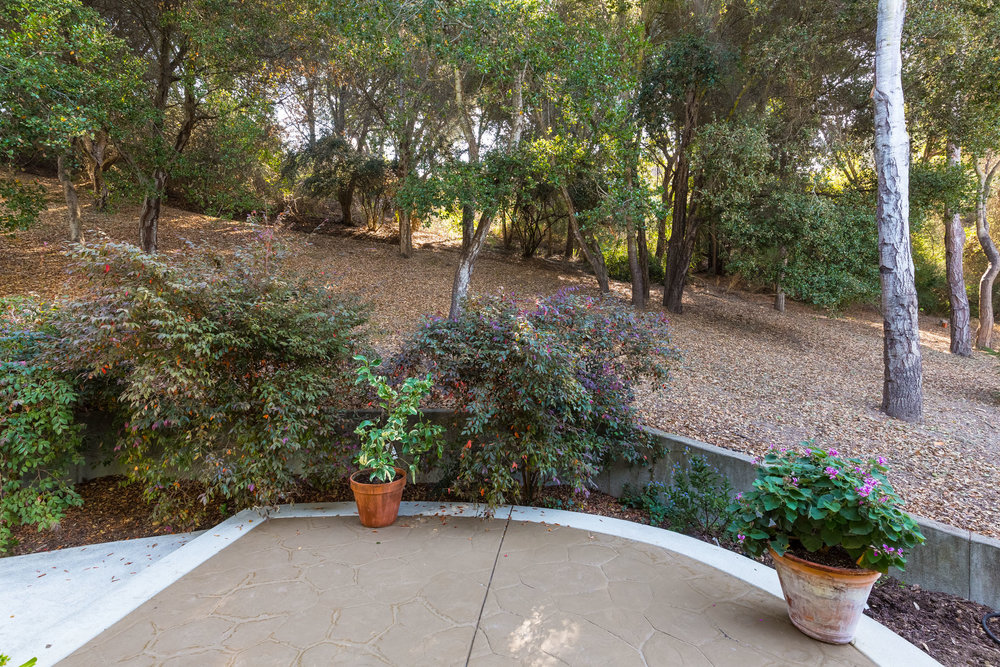 Tranquil Backyard Real Estate Agents in Santa Cruz