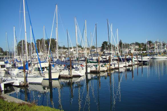 YACHT hARBOR - The Santa Cruz Yacht Harbor can be accessed easily from most parts of the Seabright neighborhood. It's a relaxing and quiet area most times of day and you'll see plenty of dog walkers, joggers, bicyclists, and people out for a casual stroll. If you take the Arana Gulch trail toward the harbor, you'll end up right at the entrance and be able to bike or walk the length of the harbor. During the holidays, the harbor hosts a popular lighted boat parade, which features several small craft, all adorned with lights and decorations, circling the harbor for viewers to enjoy.