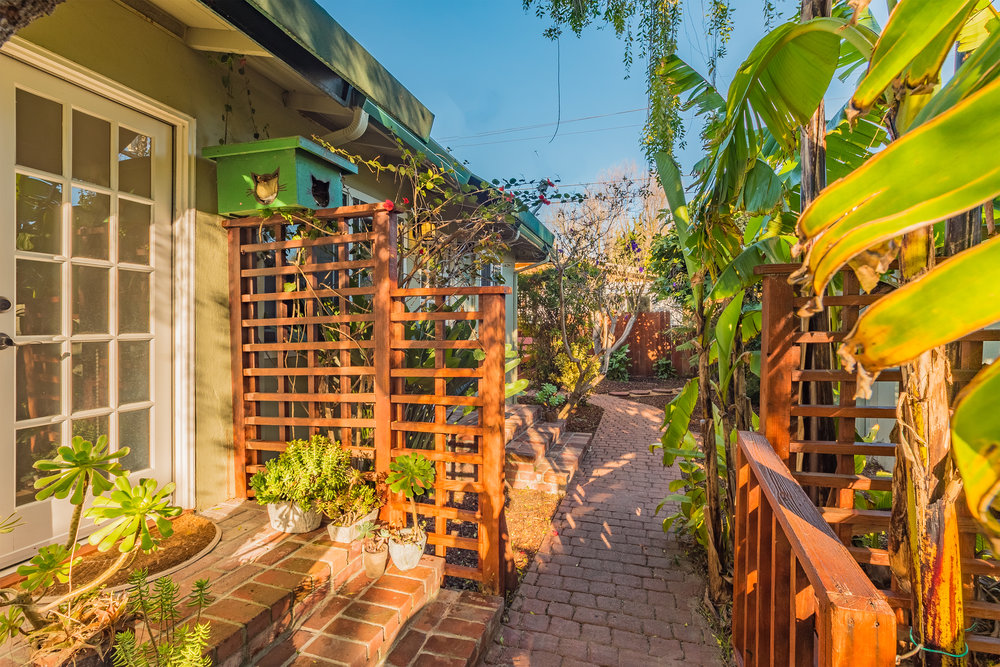 Sunny Yard Santa Cruz Realtor.jpg