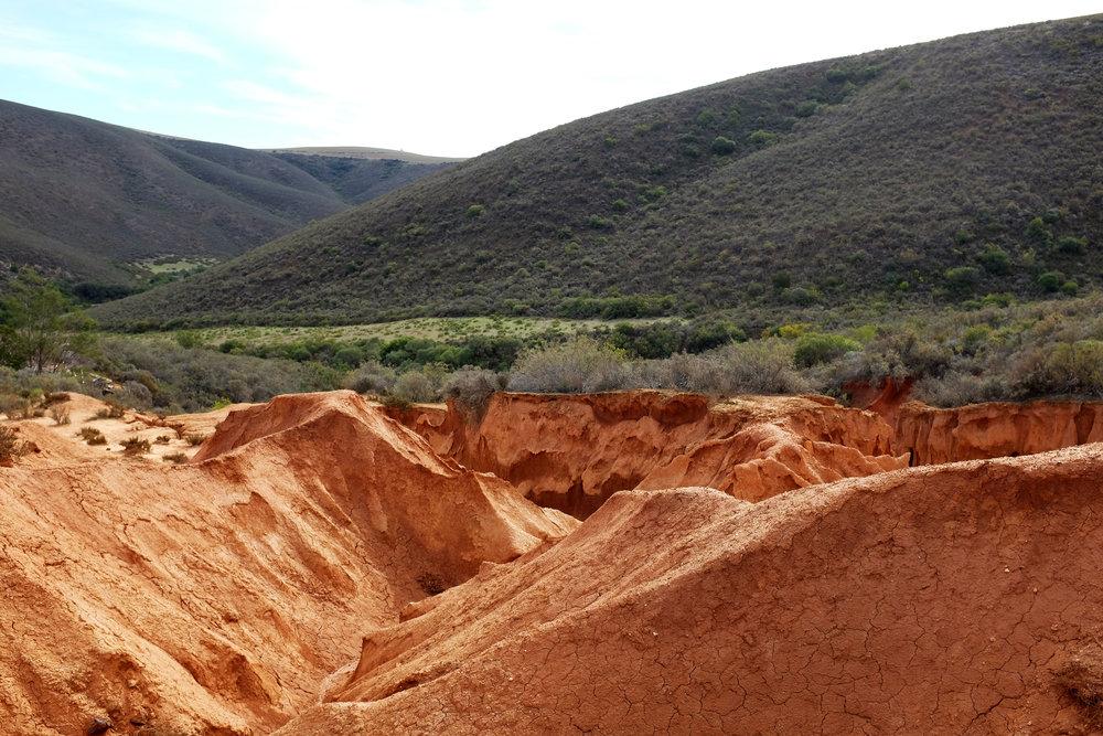 Porcupine hills colour swatch.jpg