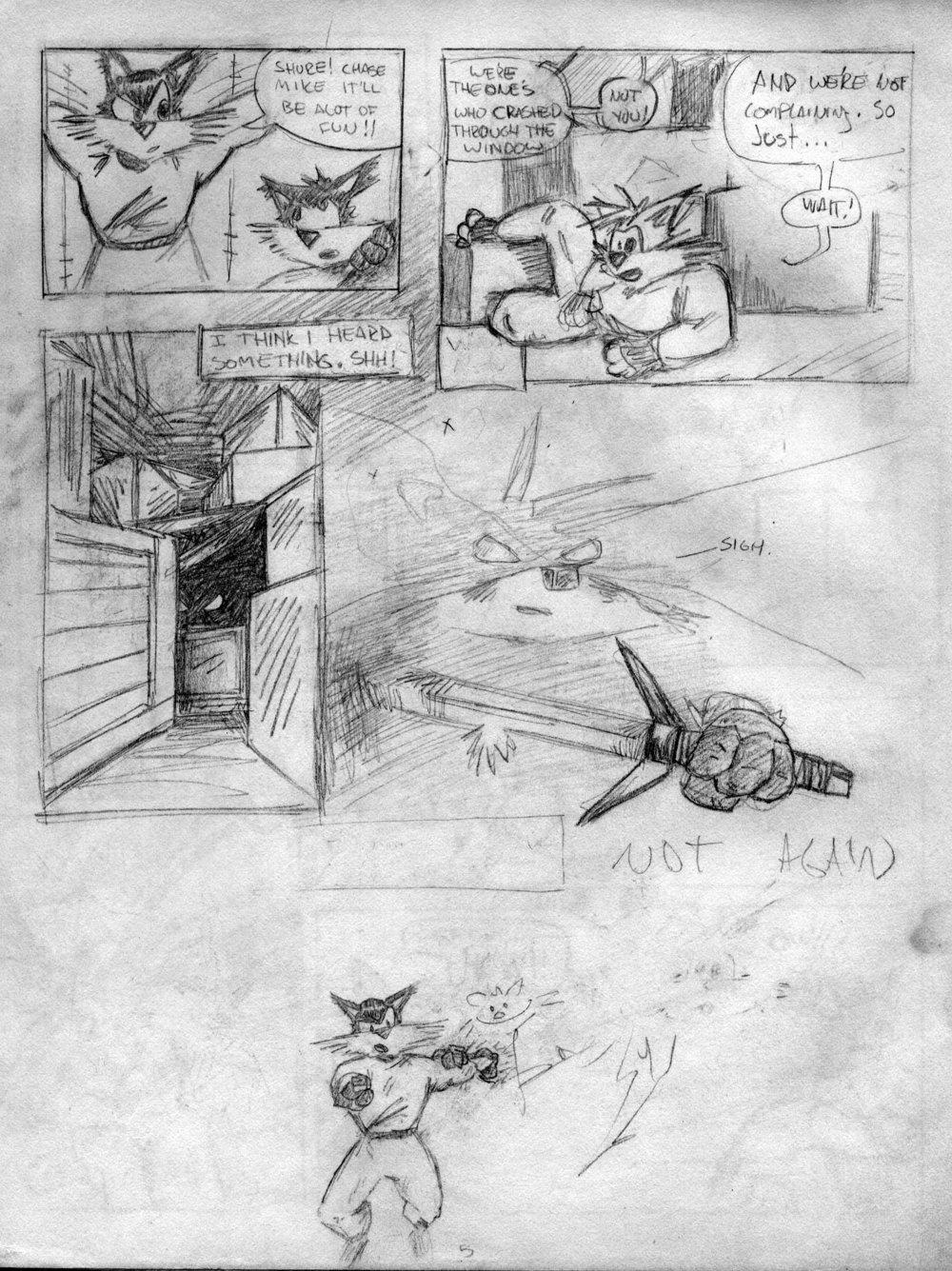 Cats-4.jpg