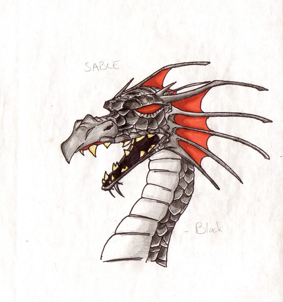 Dragons_Beasts-01.jpg