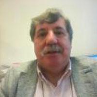 LuisPedroPedreira_FIFED
