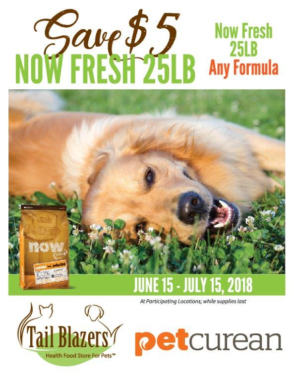 PetcureanJune-July2018-poster-web-1.jpg