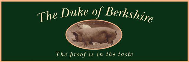 LogoDuke-2.jpg