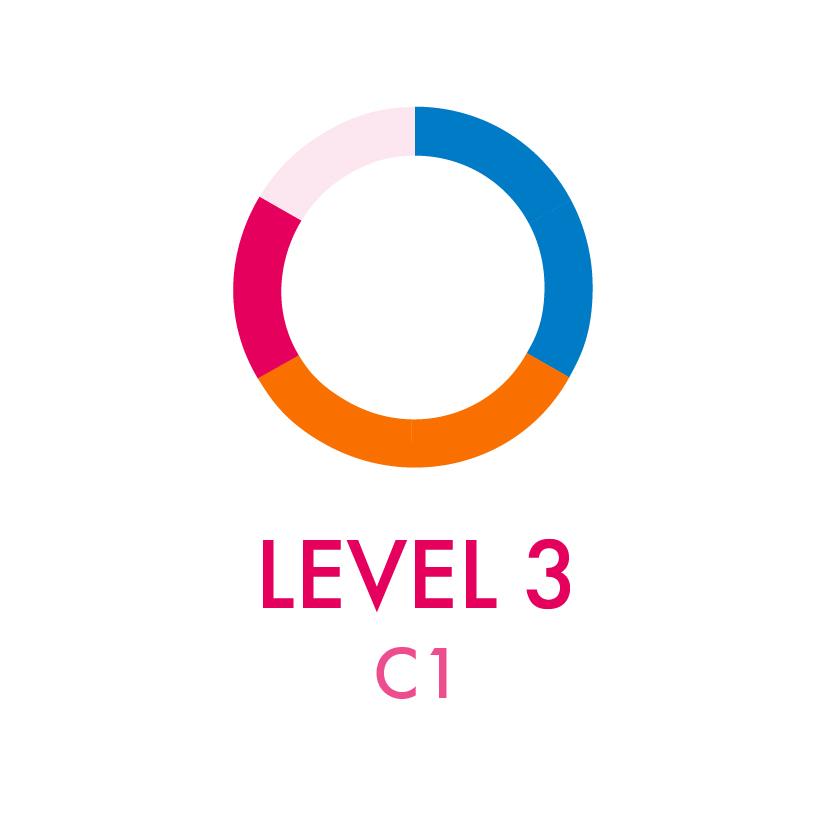 Level 3 - C1