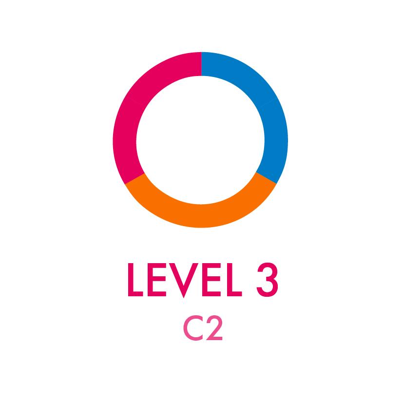 Level 3 - C2