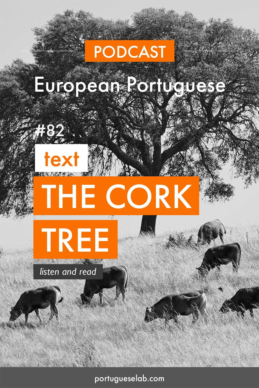 Portuguese Lab Podcast - European Portuguese - 82 - The cork tree forest.jpg
