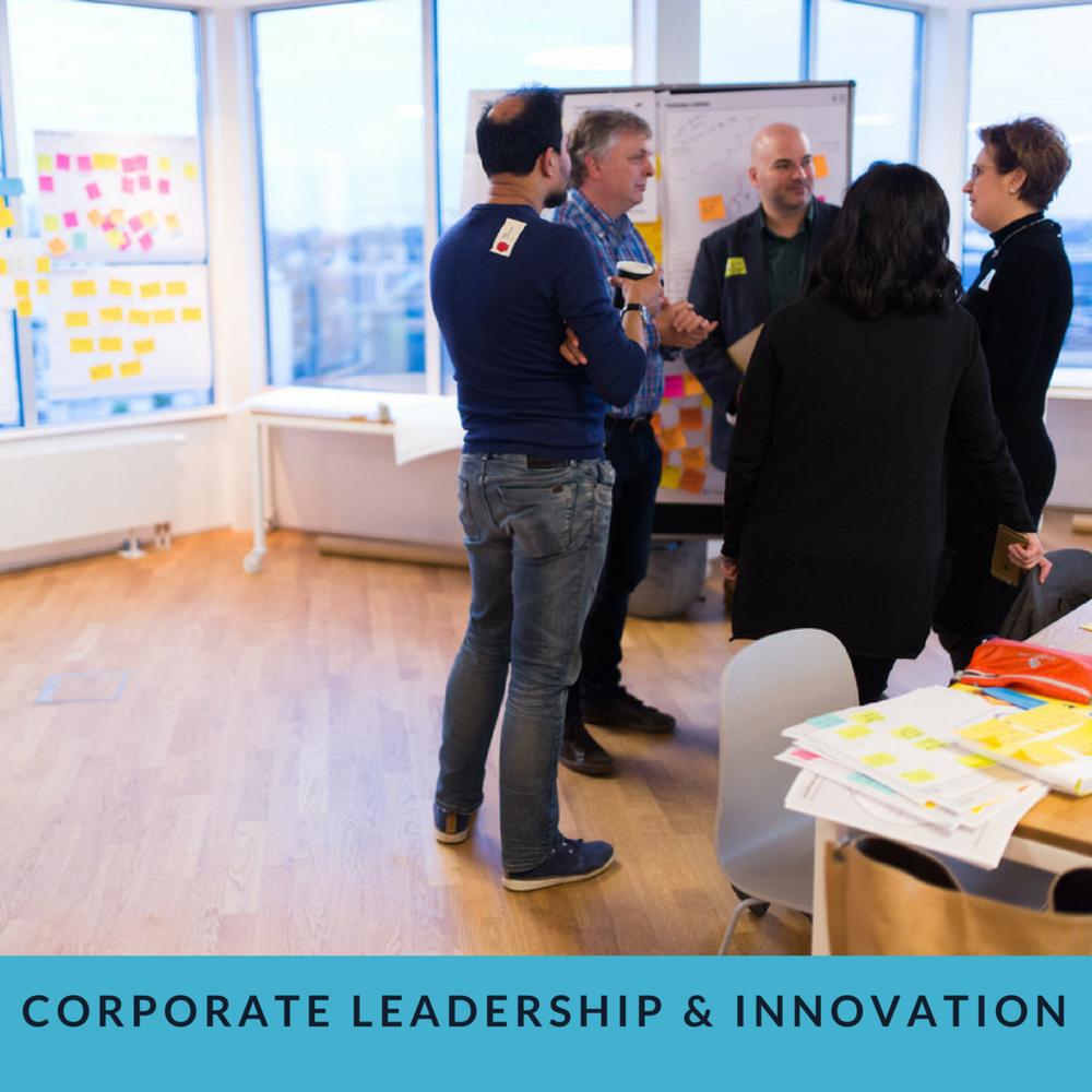 Corporate Leadership & Innovation