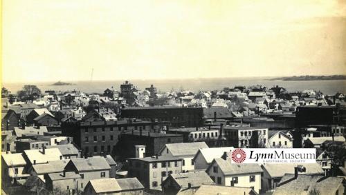 Lynn Museum