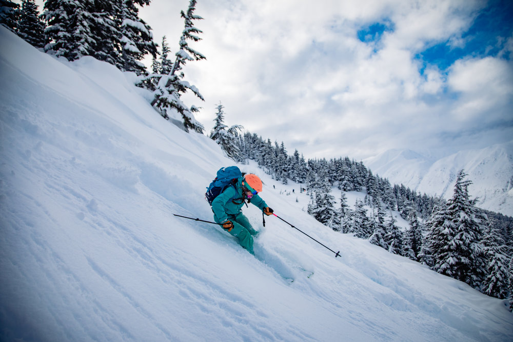 let it fly - The Ski Journal