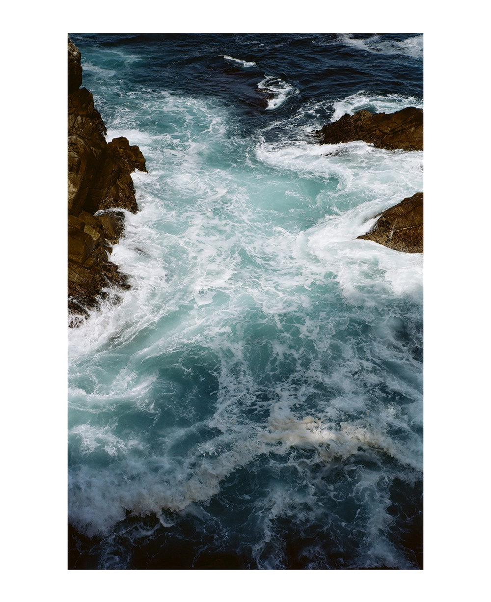 Point Lobos, California.