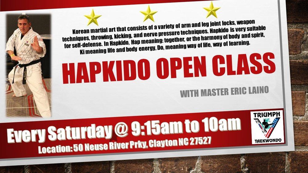 Hapkido open class.jpg