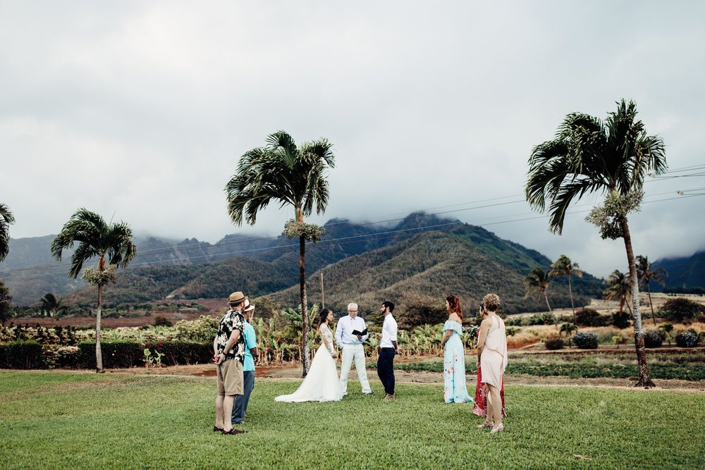 MAUI-TROPICAL-PLANTATION-WEDDING416300.jpg