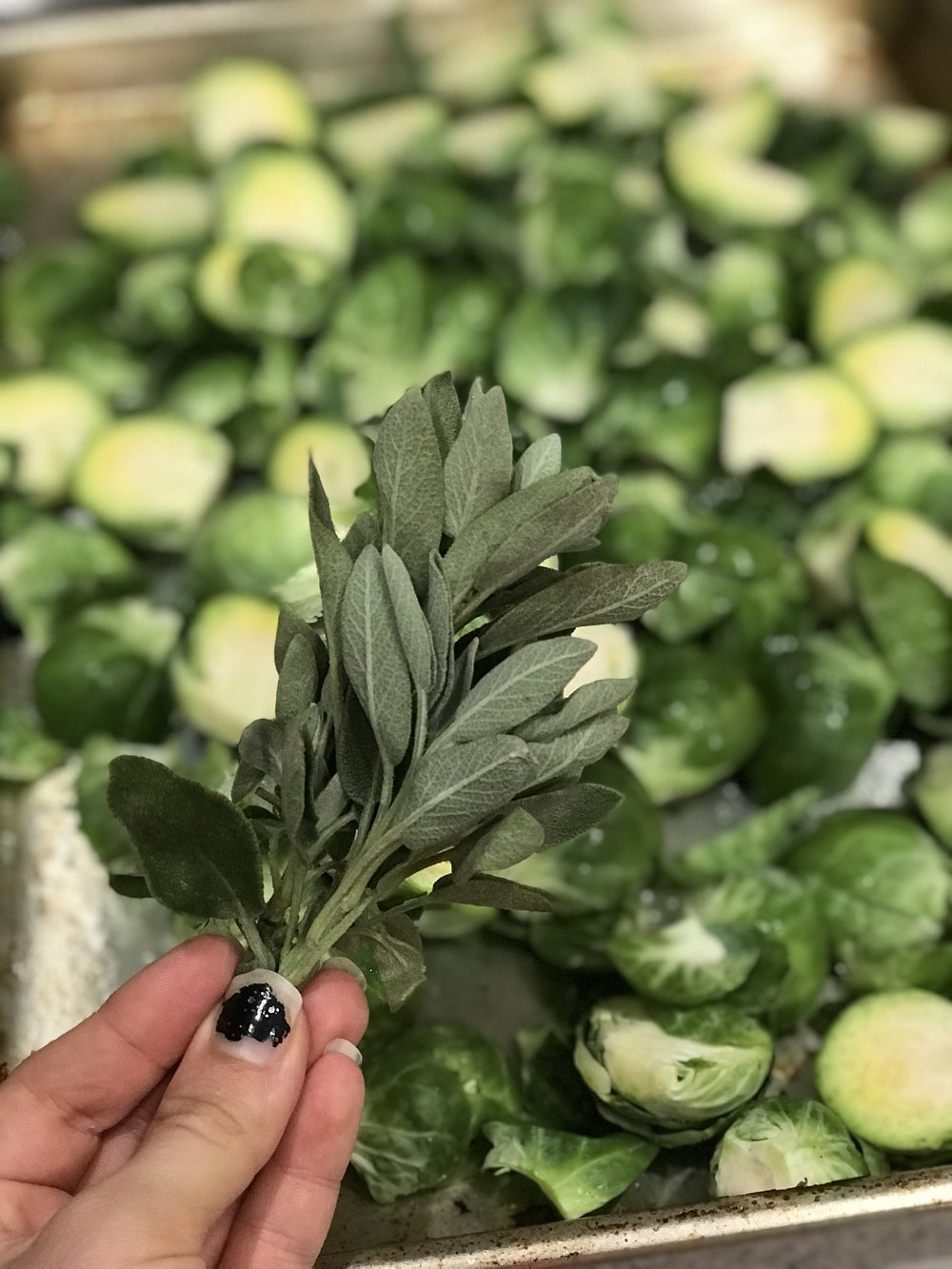 brusselsprouts (1).jpg