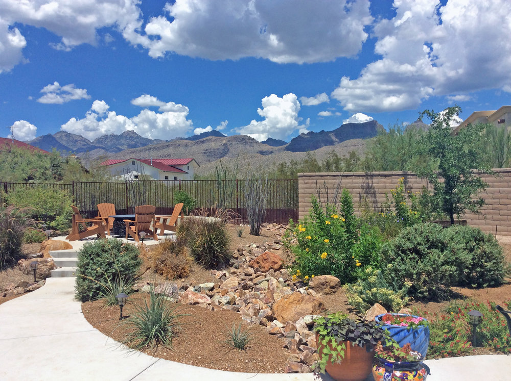 WDG Developed The Planting, Irrigation, Lighting, And Hardscape Plans For  This Mountain View Residence On The East Side Of Tucson. New Landscape  Design ...