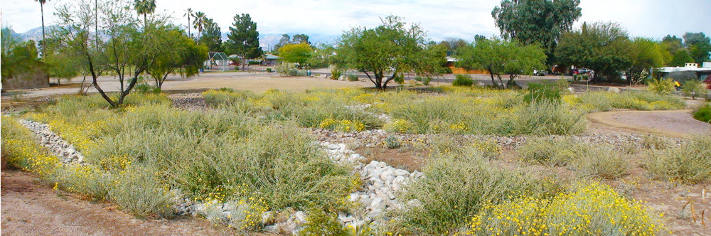 Highland Vista Park