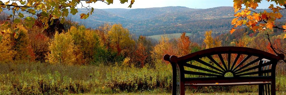 Fall-Bench.jpg