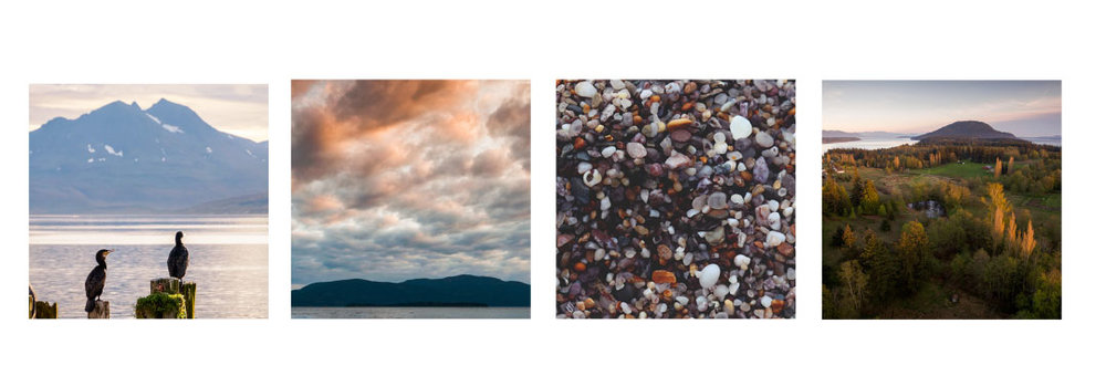 Moodboard and inspiration for Lummi Island Realty.