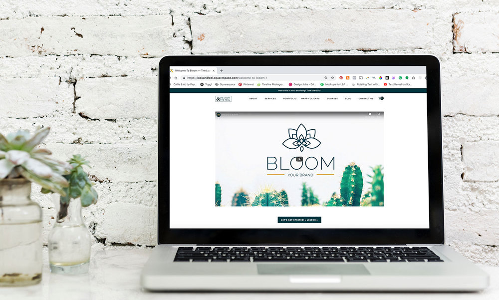 What you get with BLOOM - We've worked together to bring you valuable content to help you create the best website for your brand• SEVEN INFO-PACKED LESSONS, brimming w/tips, tools, and useful guidelines for you to use.• Easy-to-follow video tutorials• Helpful downloadable PDFS and worksheets• PLUS, email support for up to 60 days from purchase from Callie & Shelly, The Look & The Feel foundersPRICE: $97