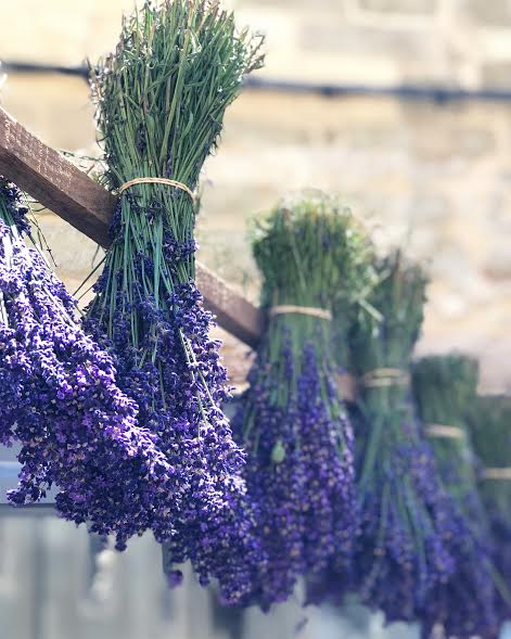 Lavender at the market in L'Isle-sur-la-Sorgue