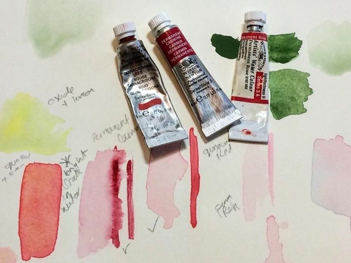 Watercolour paint - Quinacridone Red, Permanent Carmine and Permanent Rose
