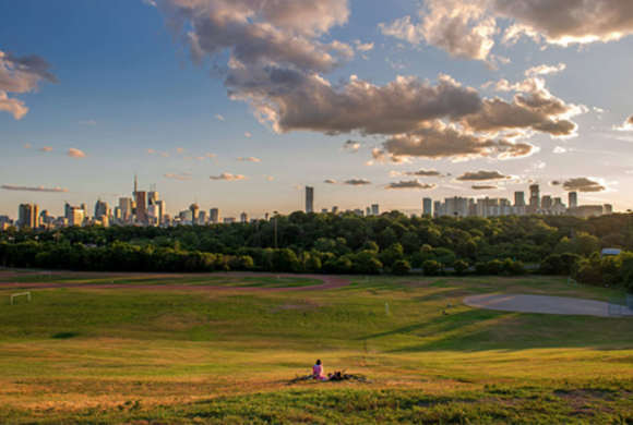 Riverdale - Don't miss Riverdale Park East and Riverdale Park West! There parks are a go-to hangout spot for social dogs and their owners. Even if you don't live in this area, it's worth spending an afternoon here with your buddy.