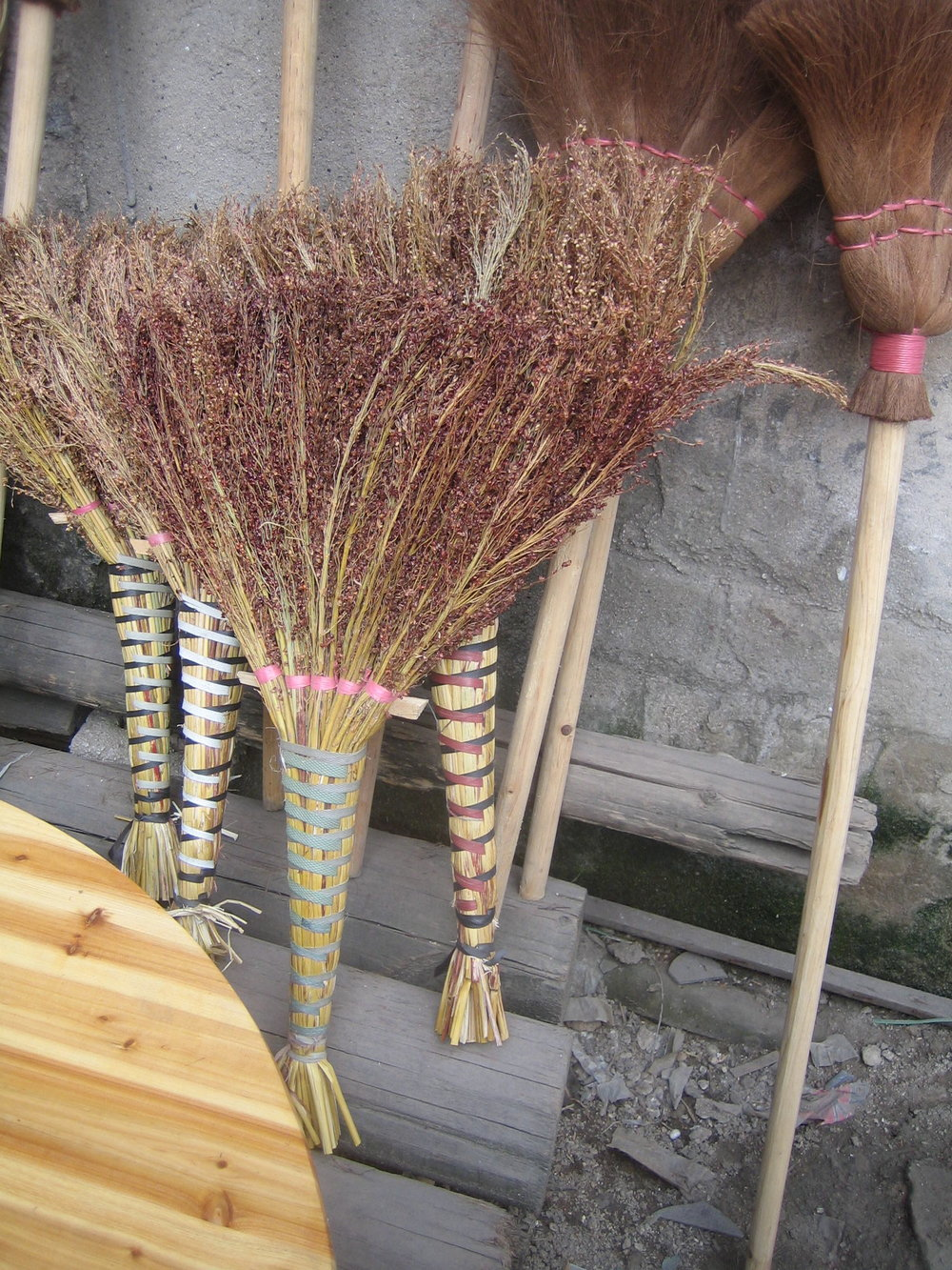 broom_China2010.jpg