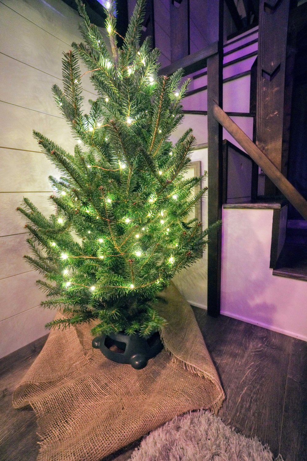 Tiny House Tiny home Christmas tree holiday tiny living celebrate small homes Diy decorations home design