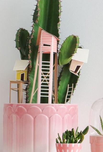 plantje-kopie1.jpg