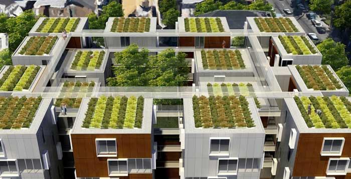 Groene daken - CSGlobe