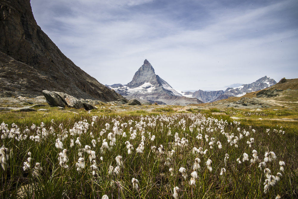 Matterhorn from Riffelalp