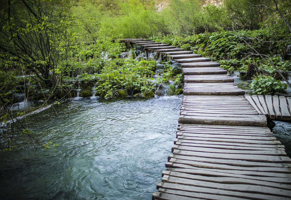 Water Pathway