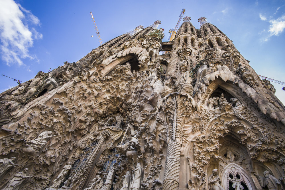 Looking up Sagrada La Familia