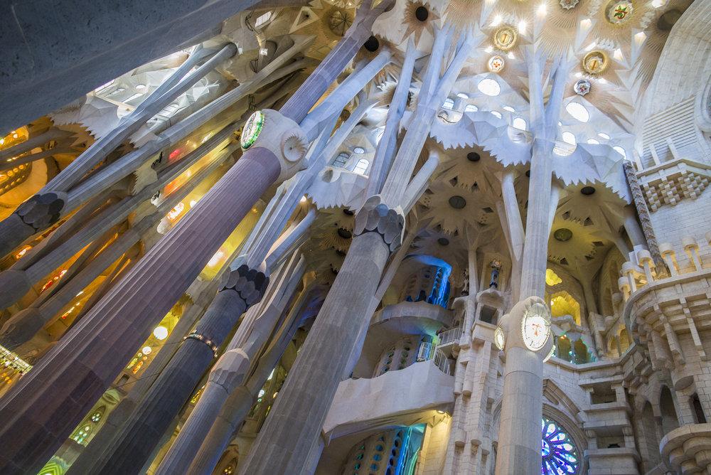 The ceiling of La Sagrada Familia