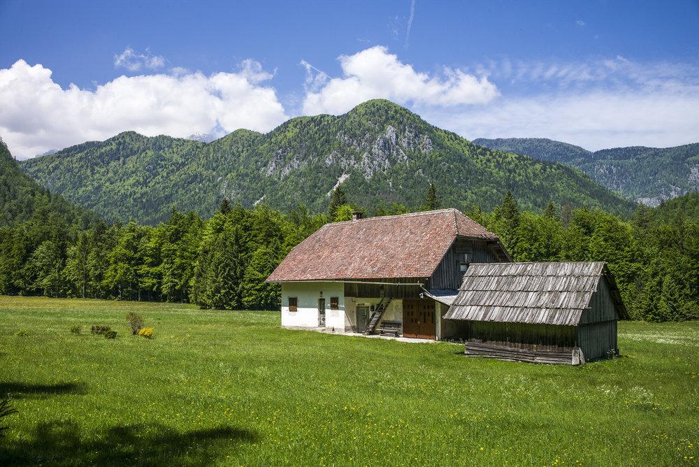 Farmhouse in Triglav