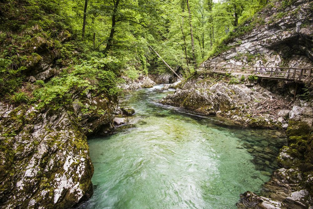 Pool in Vingtar Gorge